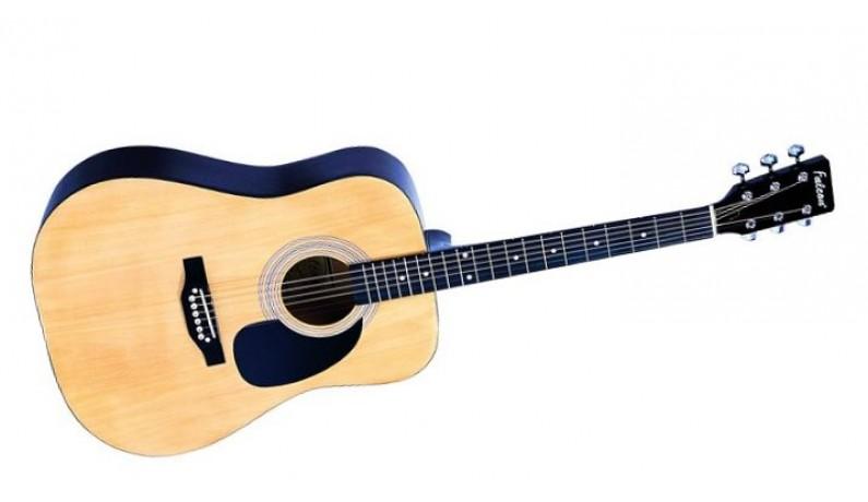 FALCON FG100N Акустична гітара дредноут