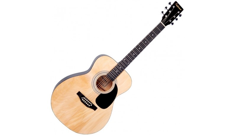 FALCON F300N Акустична гітара фолк